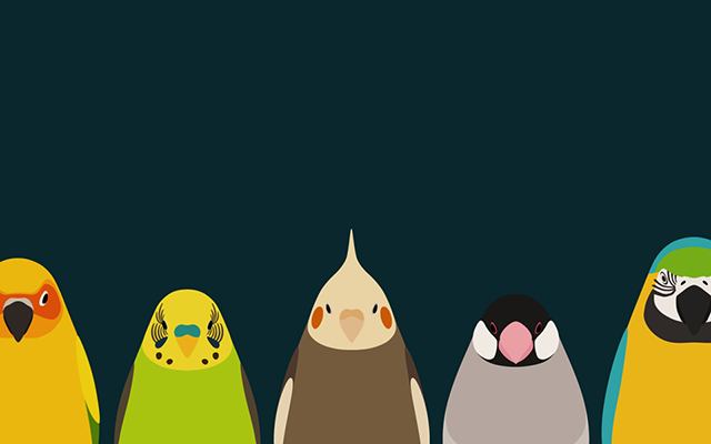 Tori Twitter Bird : カレンダー 画像 フリー : カレンダー